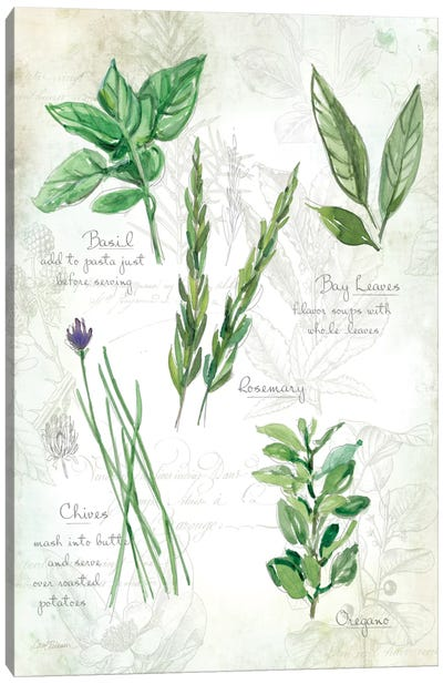 Fresh Herbs I Canvas Print #CRO71