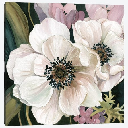 Anemone Study I Canvas Print #CRO728} by Carol Robinson Canvas Artwork