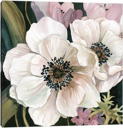Anemone Study I Canvas Art Print