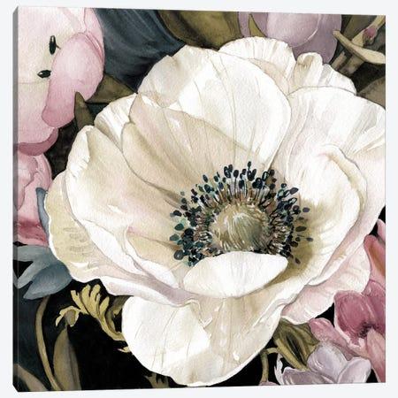 Anemone Study II Canvas Print #CRO729} by Carol Robinson Canvas Artwork