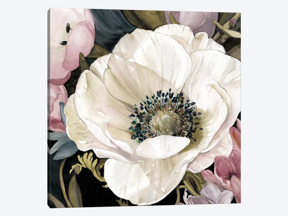 Anemone Study II by Carol Robinson 1-piece Canvas Print
