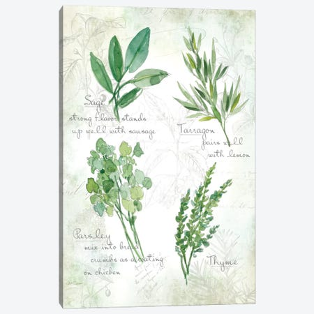 Fresh Herbs II Canvas Print #CRO72} by Carol Robinson Art Print