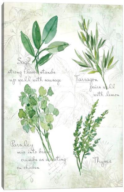 Fresh Herbs II Canvas Art Print