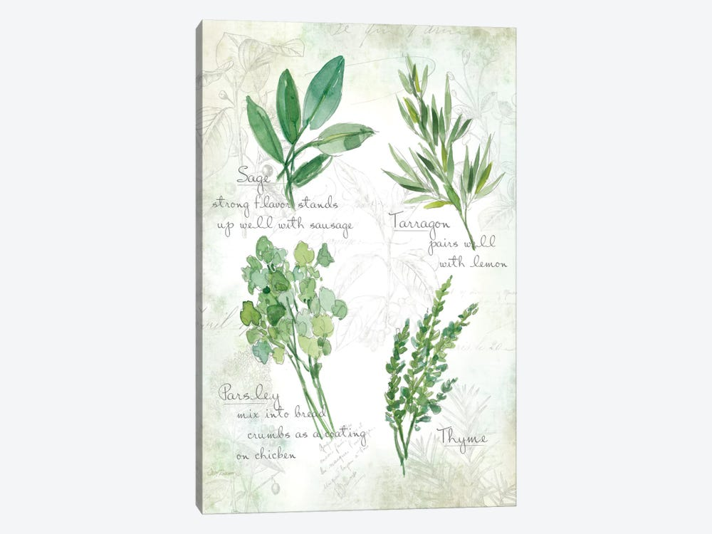 Fresh Herbs II by Carol Robinson 1-piece Canvas Artwork