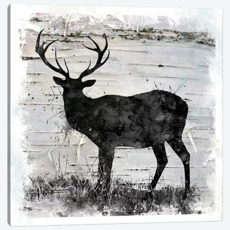 Birchbark Deer Canvas Print #CRO739} by Carol Robinson Canvas Art Print