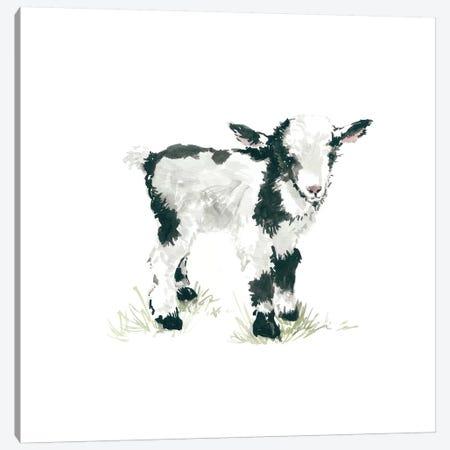 Goat Canvas Print #CRO73} by Carol Robinson Art Print