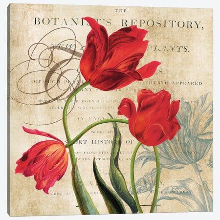 Botanist's Repository Canvas Print #CRO744} by Carol Robinson Canvas Print