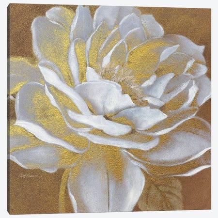 Golden Bloom I Canvas Print #CRO74} by Carol Robinson Canvas Artwork