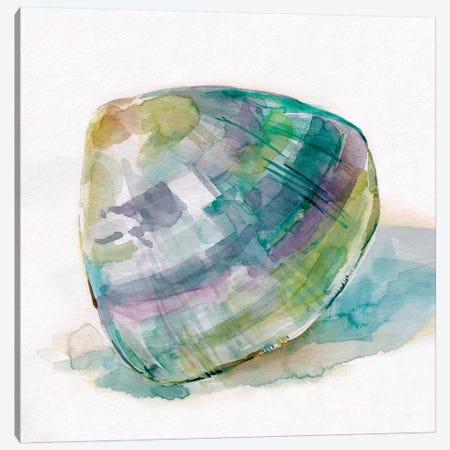 Malecon Shell II Canvas Print #CRO787} by Carol Robinson Canvas Print