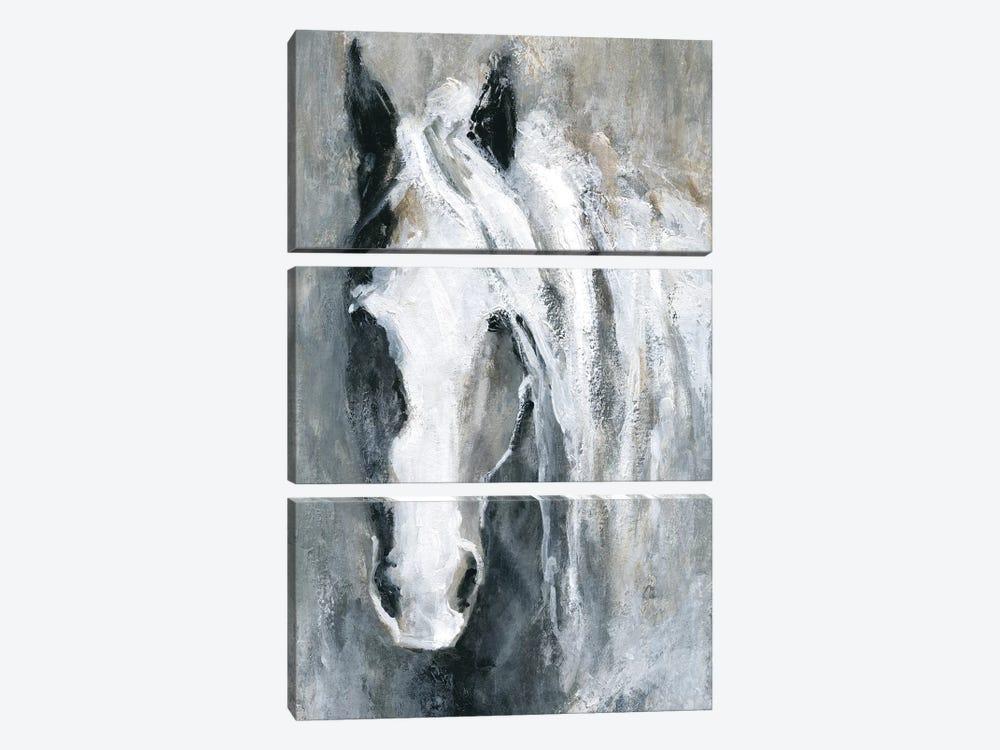 Morning Greeting by Carol Robinson 3-piece Canvas Wall Art