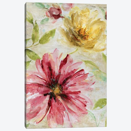 Morning Petals I Canvas Print #CRO796} by Carol Robinson Canvas Artwork