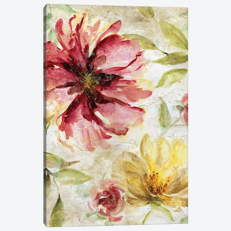 Morning Petals II Canvas Print #CRO797} by Carol Robinson Canvas Wall Art