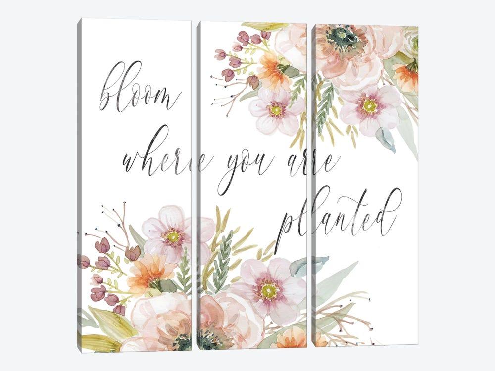 Peach Bloom I by Carol Robinson 3-piece Canvas Wall Art