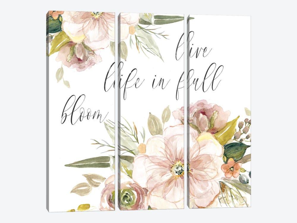 Peach Bloom II by Carol Robinson 3-piece Art Print