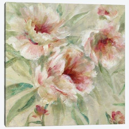 Peony Garden I Canvas Print #CRO810} by Carol Robinson Canvas Art