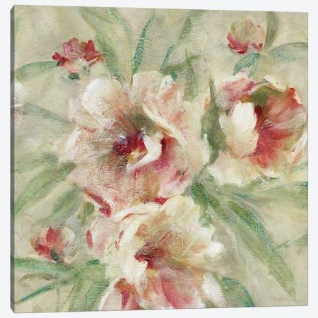 Peony Garden II Canvas Print #CRO811} by Carol Robinson Canvas Wall Art