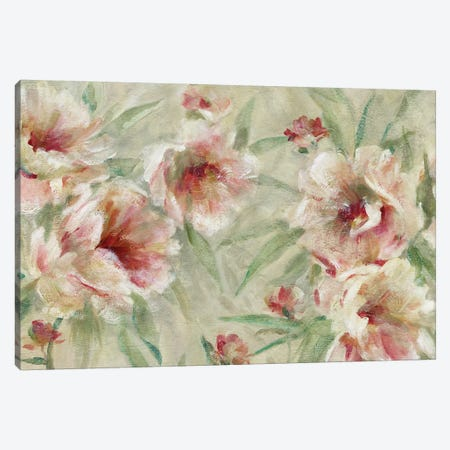 Peony Pleasure Canvas Print #CRO812} by Carol Robinson Canvas Art