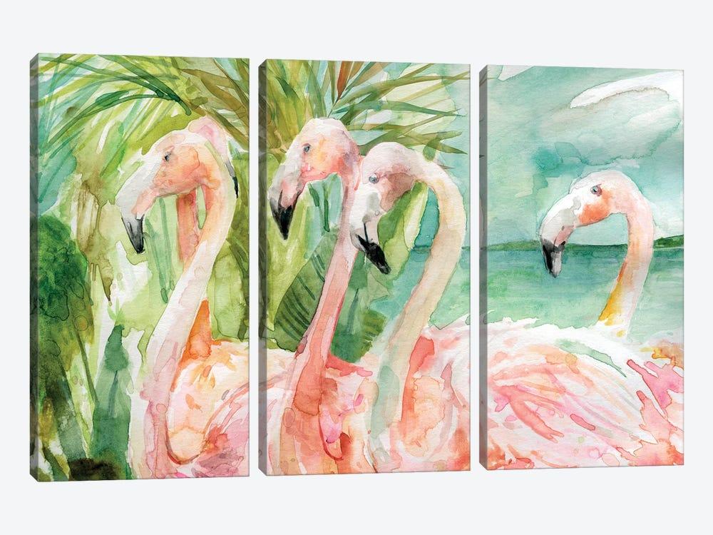 Pink Ladies by Carol Robinson 3-piece Canvas Art