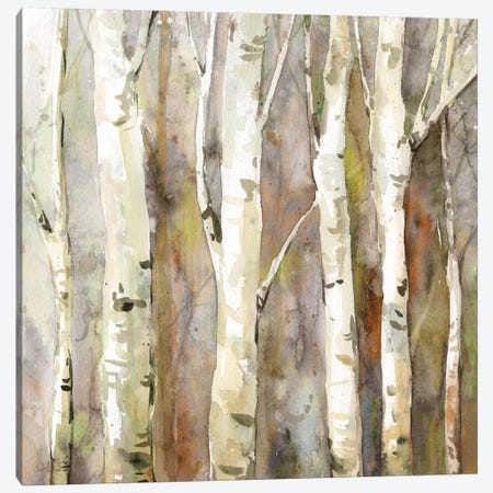 Quiet Morning II Canvas Print #CRO824} by Carol Robinson Canvas Wall Art