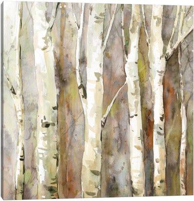 Quiet Morning II Canvas Art Print