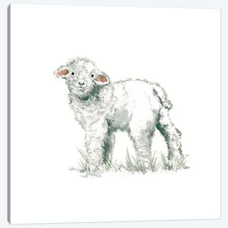 Lamb Canvas Print #CRO82} by Carol Robinson Canvas Wall Art