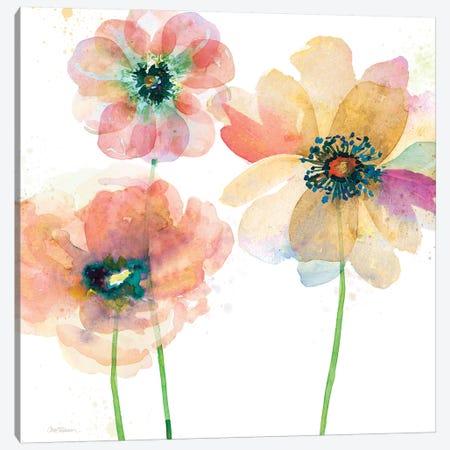 Summer Field's II Canvas Print #CRO842} by Carol Robinson Canvas Print
