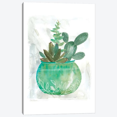 Summer Succulent Canvas Print #CRO843} by Carol Robinson Canvas Art Print
