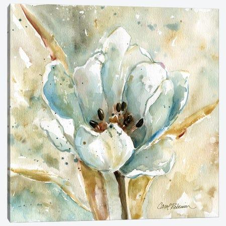 Tulip Canvas Print #CRO851} by Carol Robinson Canvas Wall Art