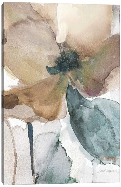 Watercolor Poppy I Canvas Art Print
