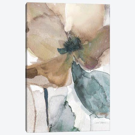 Watercolor Poppy I Canvas Print #CRO858} by Carol Robinson Canvas Wall Art