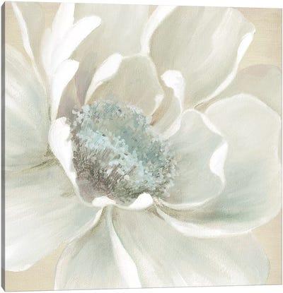 Winter Blooms I Canvas Art Print