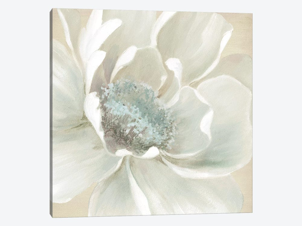 Winter Blooms I by Carol Robinson 1-piece Canvas Artwork