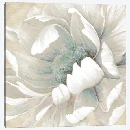 Winter Blooms II Canvas Print #CRO865} by Carol Robinson Canvas Wall Art
