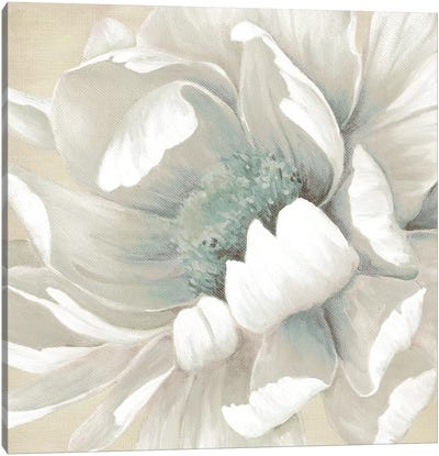 Winter Blooms II Canvas Art Print