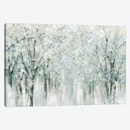 Winter Mist  Canvas Print #CRO866} by Carol Robinson Canvas Artwork