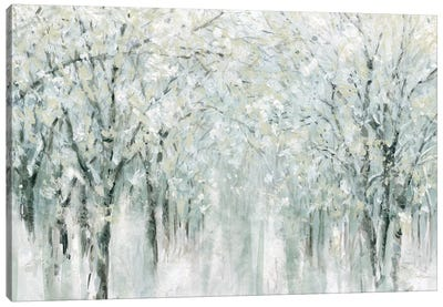 Winter Mist  Canvas Art Print