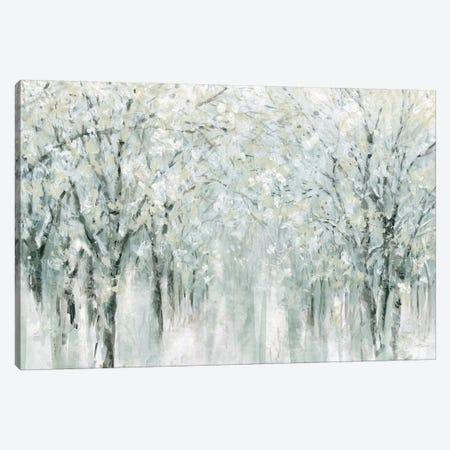 Winter Mist  Canvas Print #CRO866} by Carol Robinson Canvas Artwork