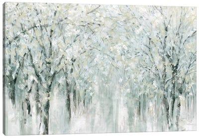 Winter Mist  Canvas Art Print