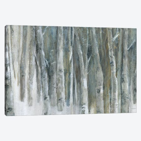 Banff Birch Grove Canvas Print #CRO868} by Carol Robinson Art Print