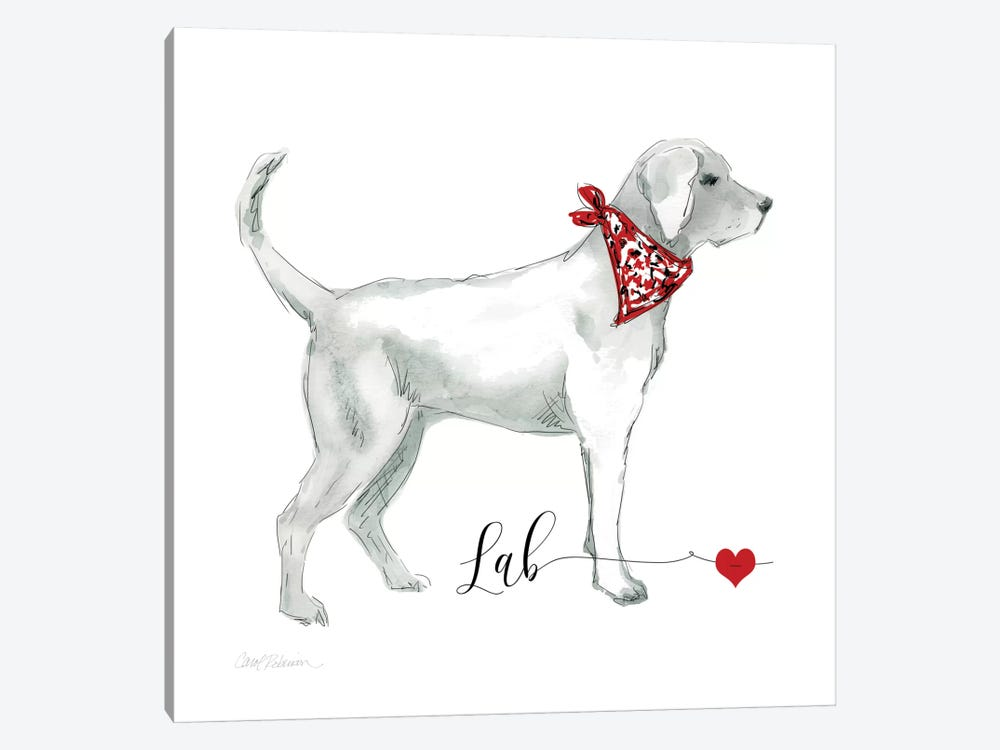 Must Love Labs by Carol Robinson 1-piece Canvas Art Print