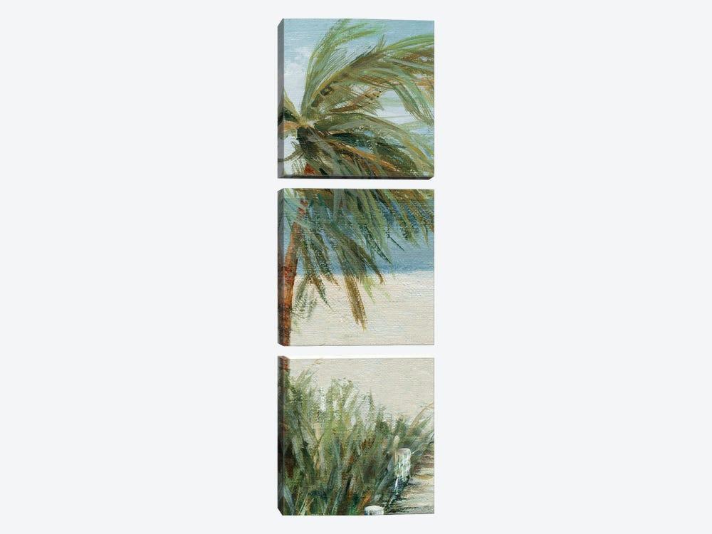 Beach Walk I by Carol Robinson 3-piece Canvas Wall Art