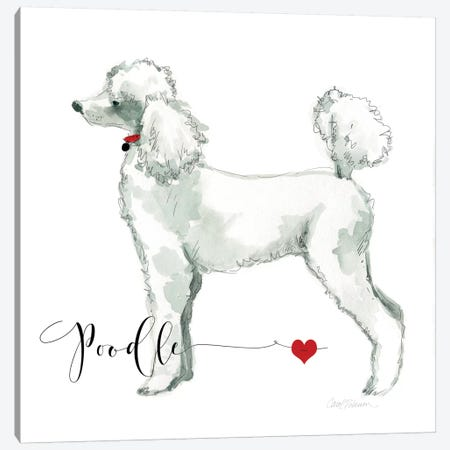 Must Love Poodles Canvas Print #CRO87} by Carol Robinson Art Print