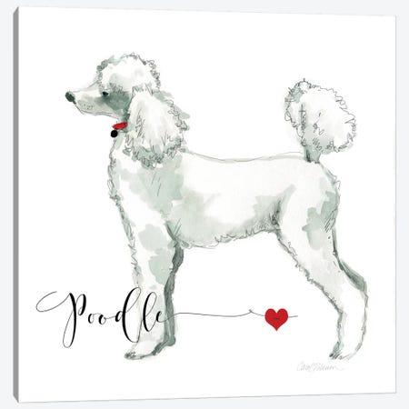 Must Love Poodles Canvas Print #CRO87} by Carol Robinson Art Print