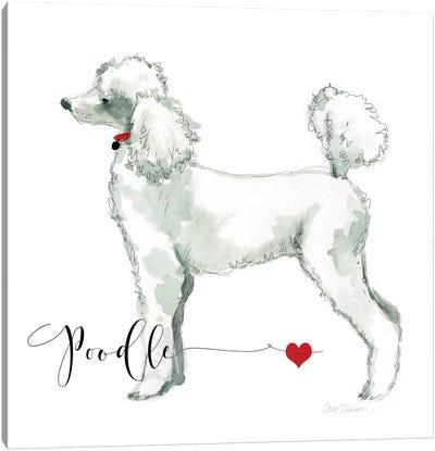 Must Love Poodles Canvas Art Print