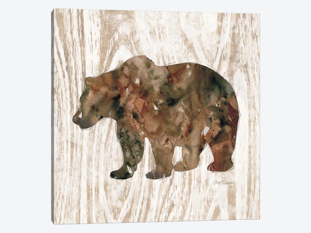 Pine Forest Bear by Carol Robinson 1-piece Canvas Art Print