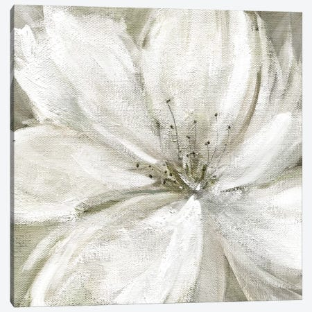 Rainy Day Soft Canvas Print #CRO890} by Carol Robinson Canvas Artwork