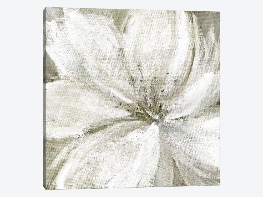 Rainy Day Soft by Carol Robinson 1-piece Canvas Art Print