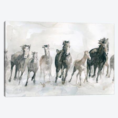 Running Wild Canvas Print #CRO891} by Carol Robinson Canvas Art