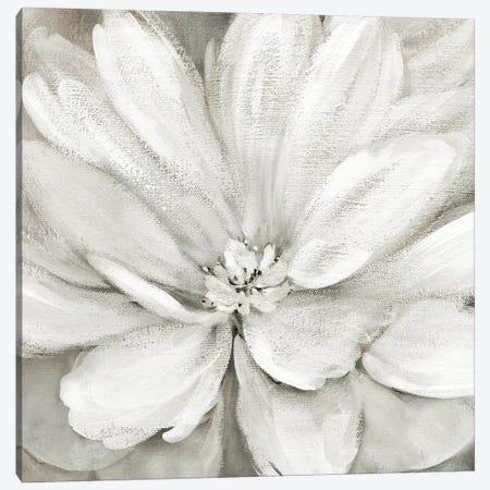 Simply Soft Canvas Print #CRO895} by Carol Robinson Art Print