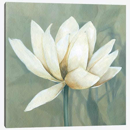 Waterlily I Canvas Print #CRO900} by Carol Robinson Canvas Artwork